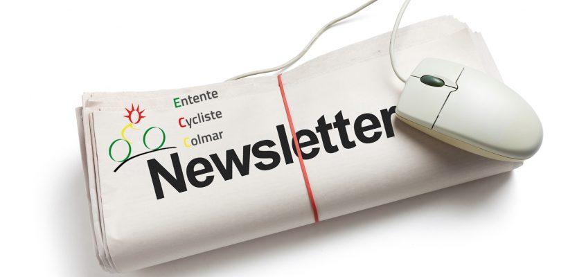 La Newsletter va remplacer la diffusion d'informations par mails