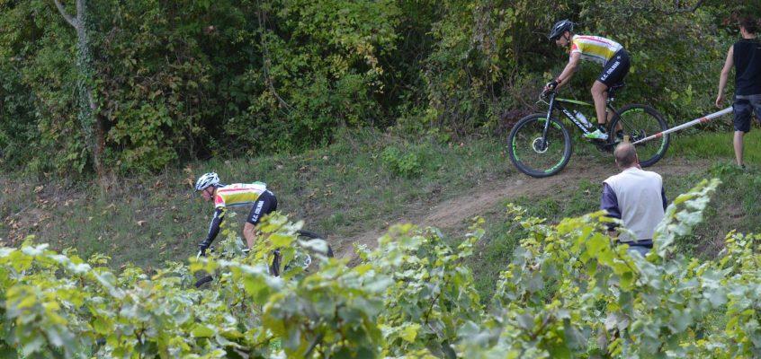 La Ronde des Vendanges de Molsheim, comme Finale de la Coupe d'Alsace VTT XC