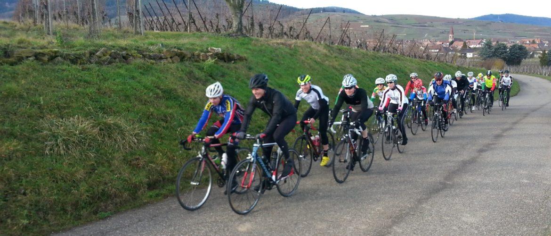 Beau peloton de l'Entente Cycliste Colmar pendant l'entraînement - Février 2016